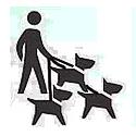semi-private dog walk