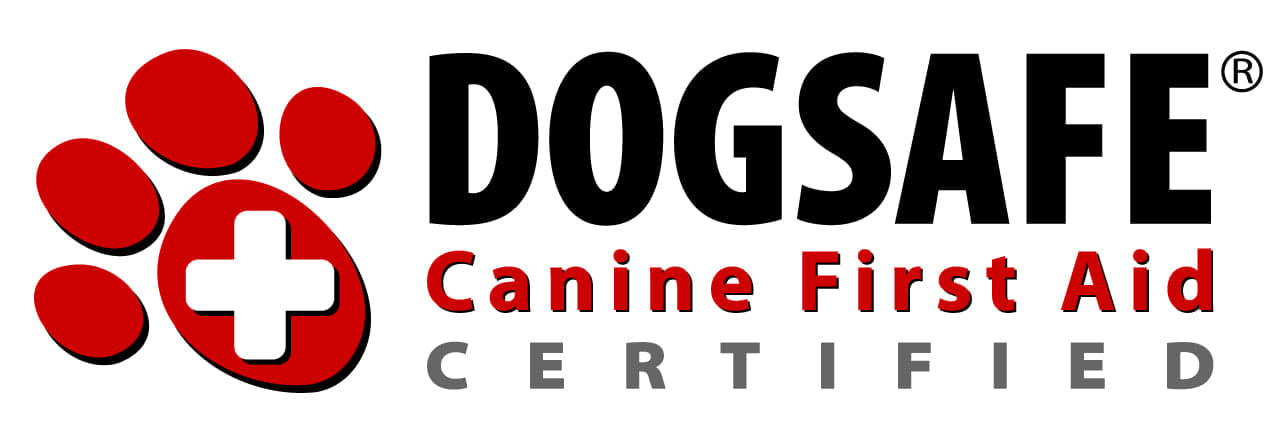 dogsafe first aid certification